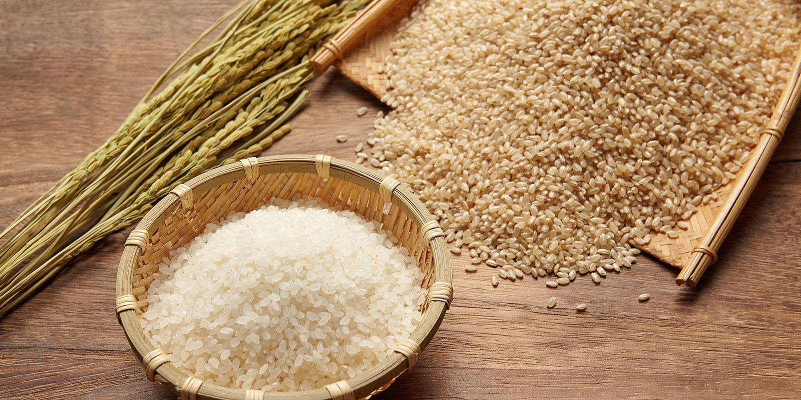 玄米をついて糠(ぬか)を取り除く「精米」 | 稲作の歴史とそれを支えた ...